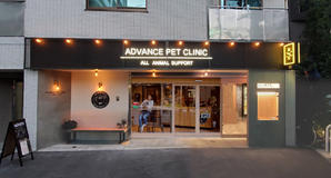 ADVANCE PET CLINIC 病院?医院?調剤薬局?整骨院の内装?外観画像