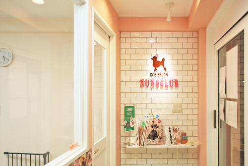 Dog Salon NUNOCLUB - SUNSHOW -