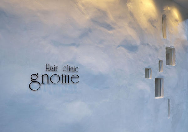 Hair Clinic gnome