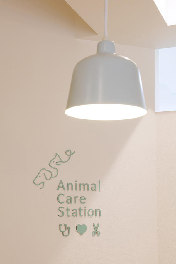 Animal Care Station