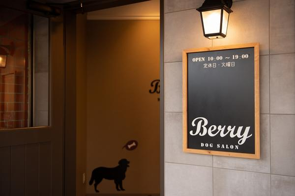 DOG SALON Berry